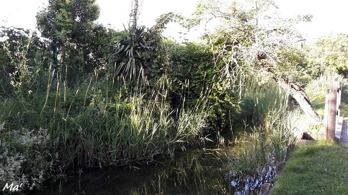 160624_chateauvert_canal_malcontents