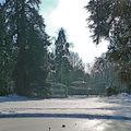 Jardin paisible sous son blanc manteau en ce début janvier