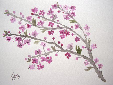 Cerisier_du_japon_3