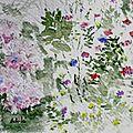 Fleurs de montagne et gros plan d'Achilée