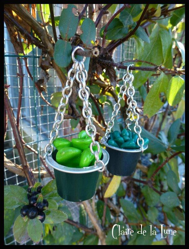 Succulentes fimo nespresso 1