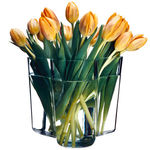 Aalto_tulips_BD