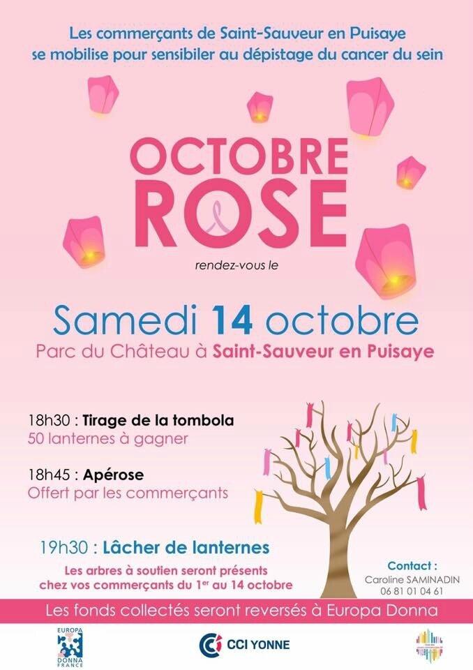 Samedi 14 Octobre, voyez la vie en rose à St Sauveur ....