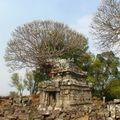 temple phnom bok_frangipanier_03