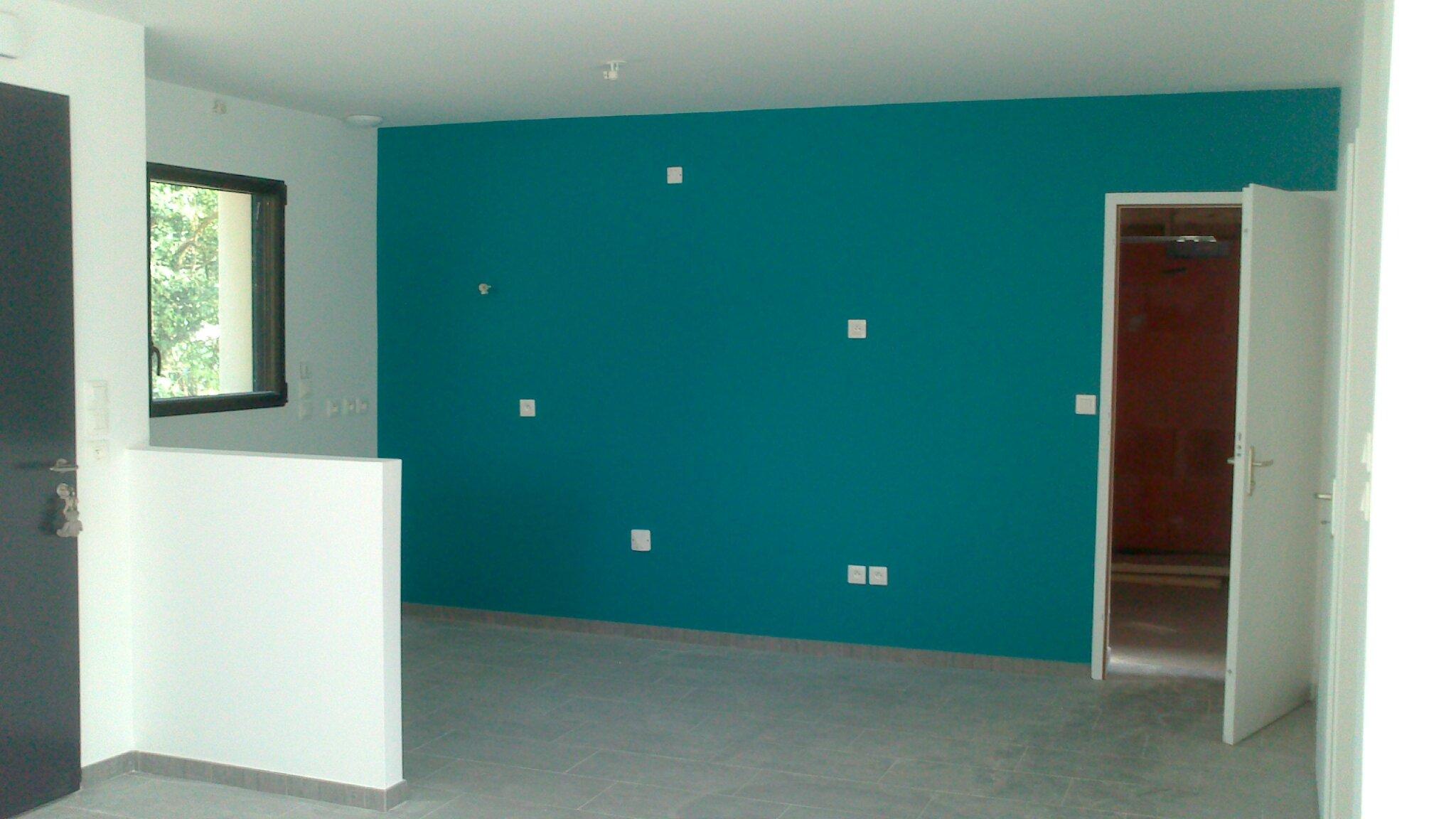 Peintures int rieures termin es construction maisons for Peintures interieures tendances