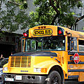 Scool District Bus Belleville_5879