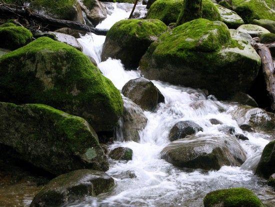 le_ruisseau_de_l_Isenbach_et_la_ferme_du_Baerenbach_006
