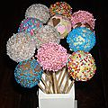 Cake pop's en folie!!!!!!