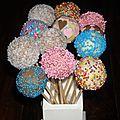 Cake pop's en folie!!!!!!