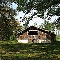Défi n°59 : la grange landaise