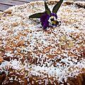 Cake allégé à la peau de banane bio