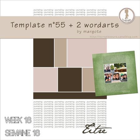 preview_template_n_55_by_margote