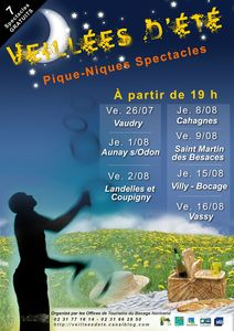 affiche_test_VDE_2013 - Copie