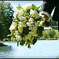 Petits & grands événements : choisir ses fleurs !