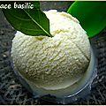Sorbet basilic