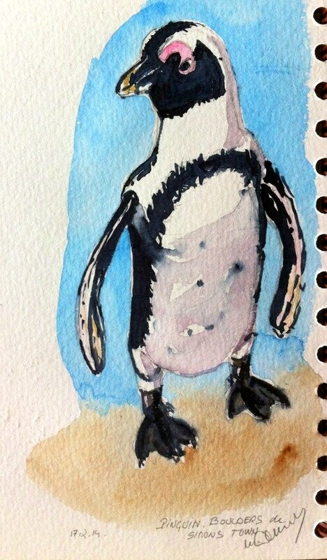 Simon's Town Penguin