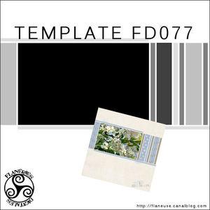 TemplateFD077_Pres