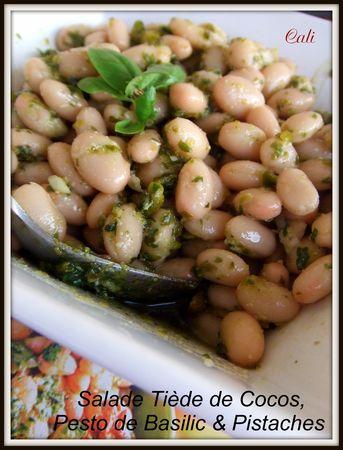 Salade_Ti_de_de_Cocos_au_Pesto_de_Basilic___Pistaches_006
