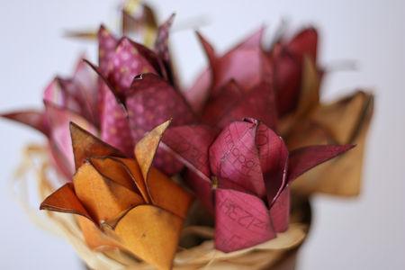 fleursM4