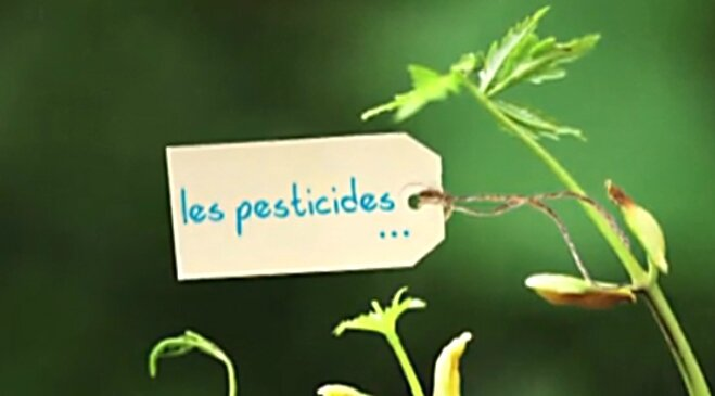 Les-pesticides