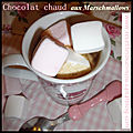Chocolat chaud aux marshmallows.