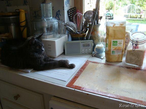 Elfie supervise la pâte à tarte