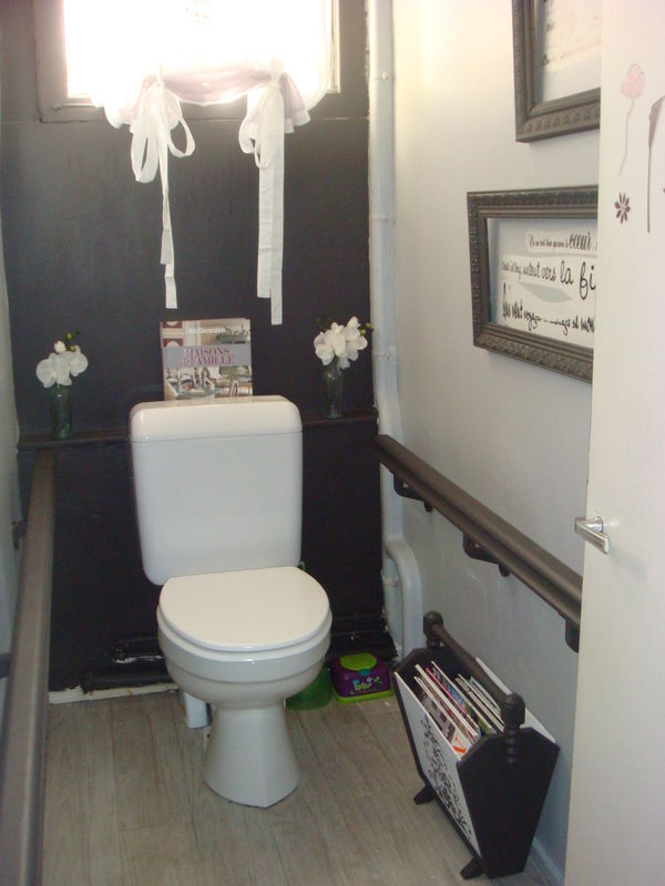 D co dans les toilettes - Idees deco toilettes photos ...