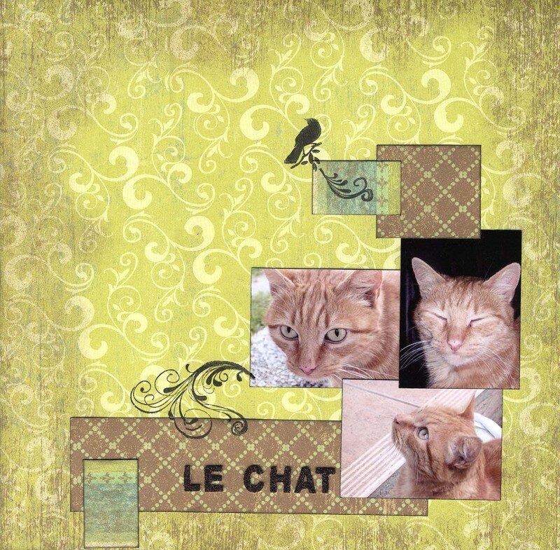 Le chat x