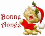 151601_191566109_bonne_annee_H124257_L