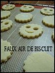 faux_air_de_biscuit
