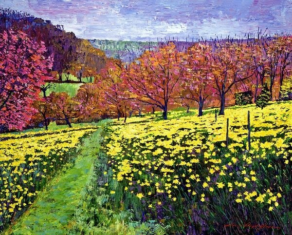 fields-of-golden-daffodils-david-lloyd-glover