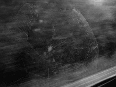Timi_train2