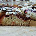 Placek drozdzomy ze sliwkami...gâteau polonais brioché aux prunes bleues et streusel