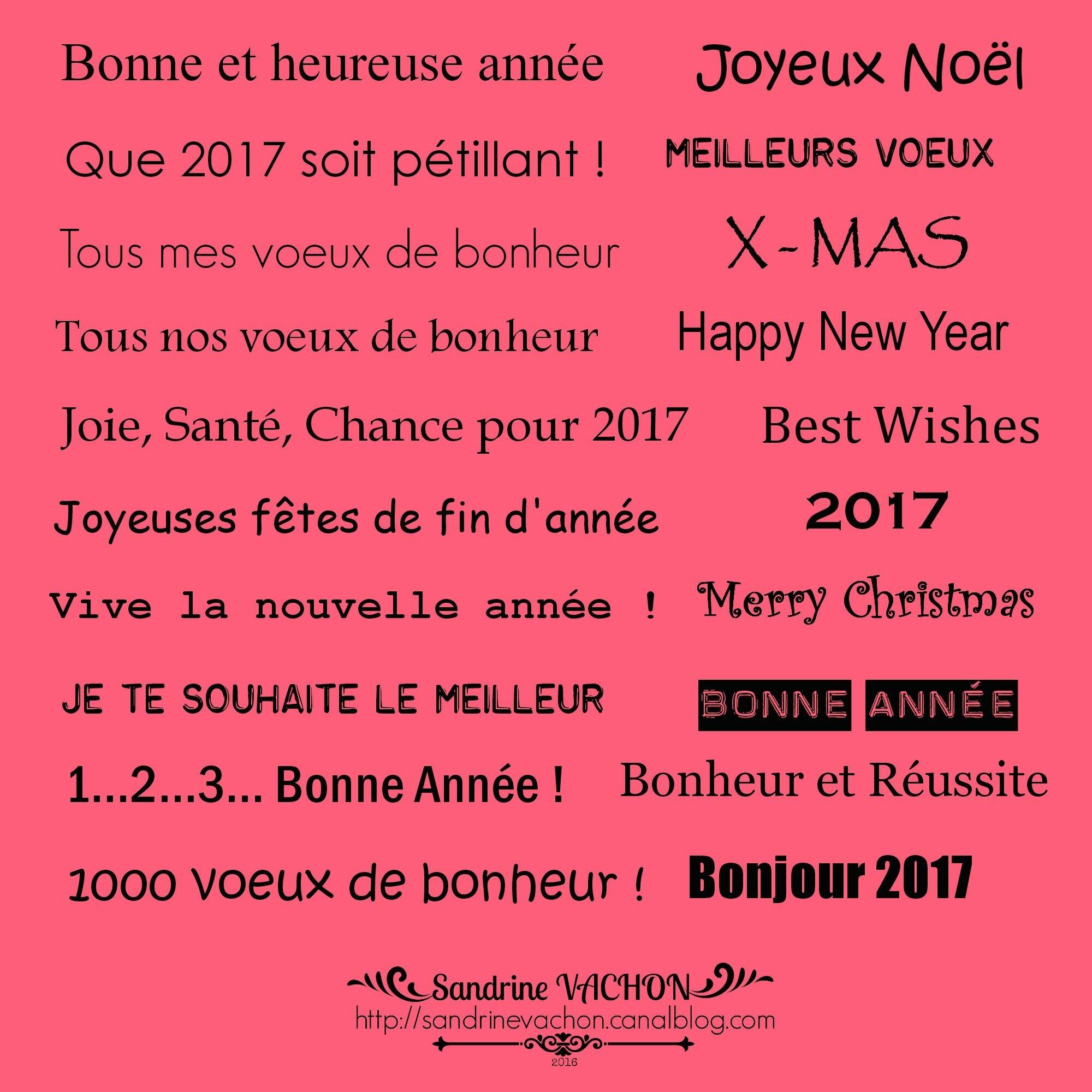 Sandrine VACHON planche 55