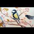 Mésanges bleues : crayons de couleur