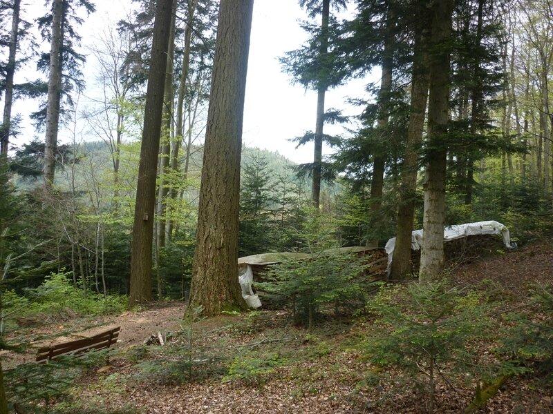 saalbach chapelle (14)