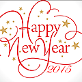 Happy new year 2015 + salduo !
