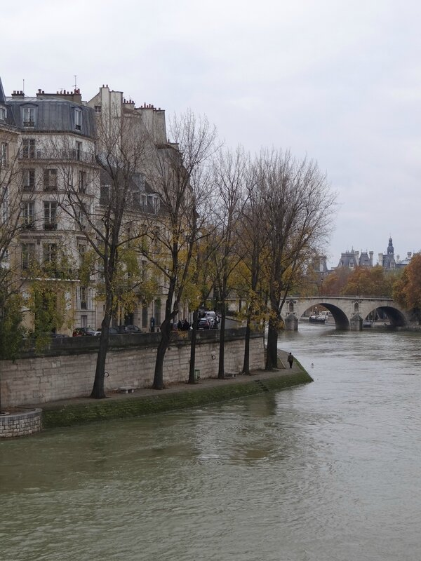 2013 11 24 Paris la Seine