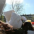 Pillow Fight 2014_3524