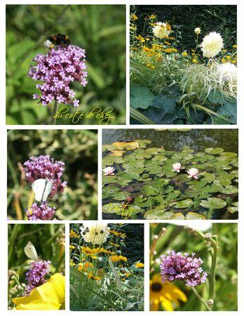 fleursjaunes