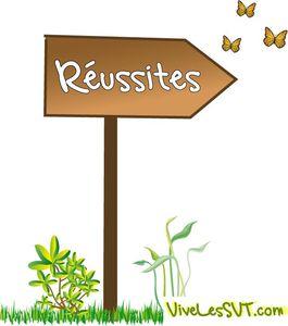 reussite_vivesvt