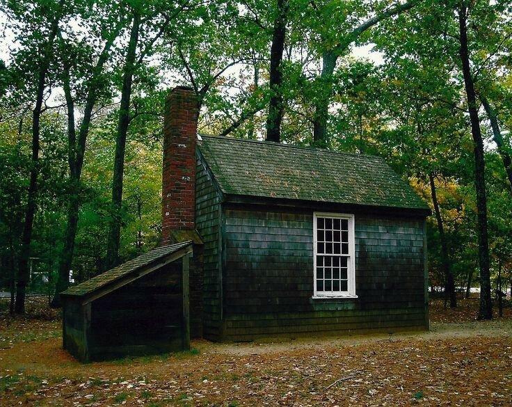 Photo-cabane-reconstituée-Thoreau-Walden-point
