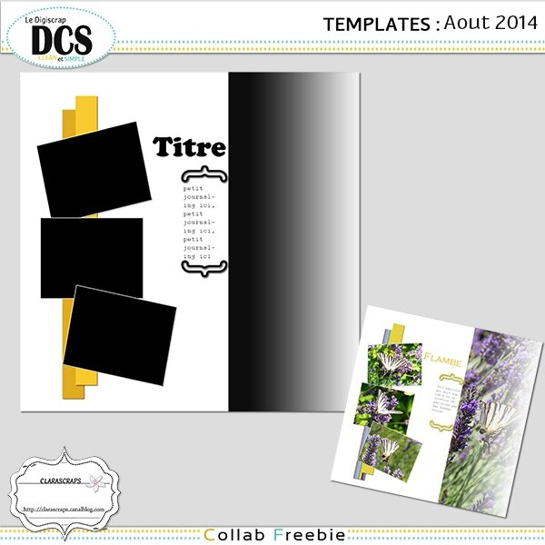 preview template aout dcs