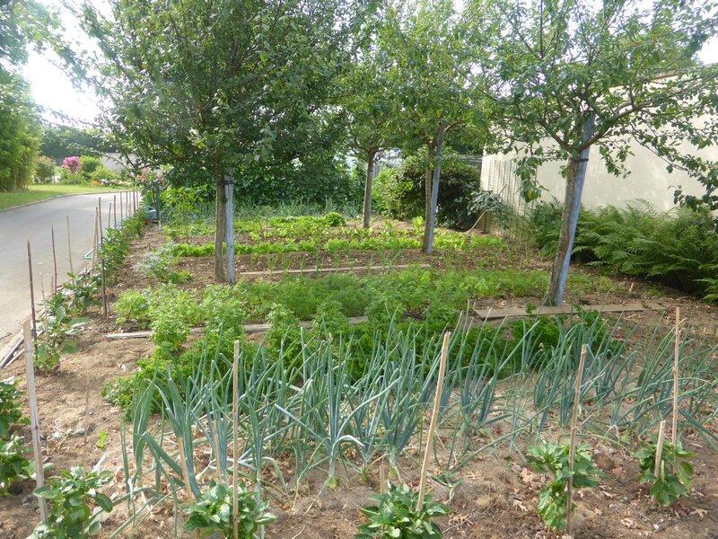 4-jardin est (2)