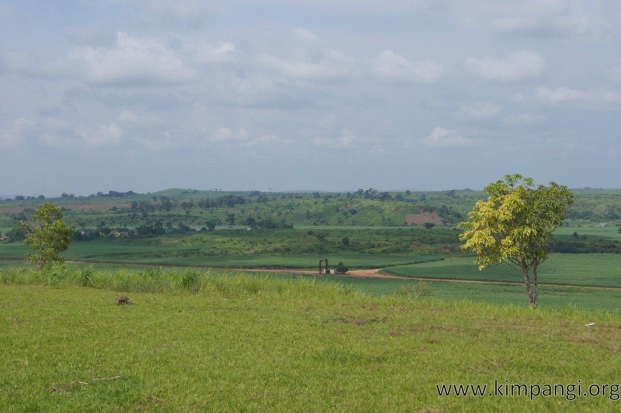 Balade plantations (12)