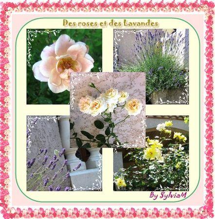 rose_et_lavande