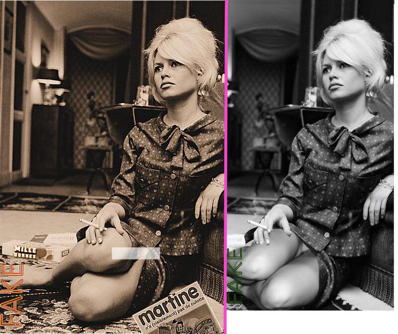 Brigitte Bardot, montage photo