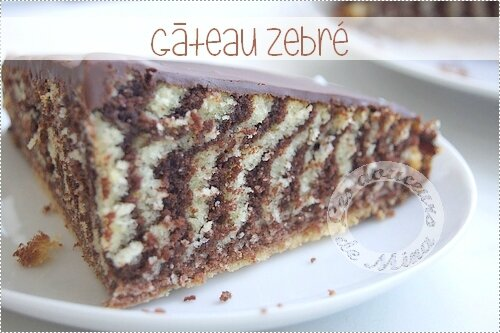 Gâteau_Zebré024