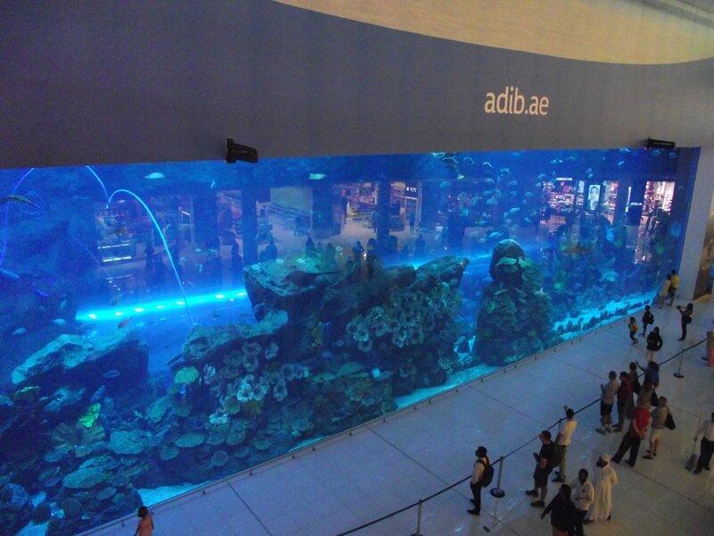 Aquarium Dubaï (2)
