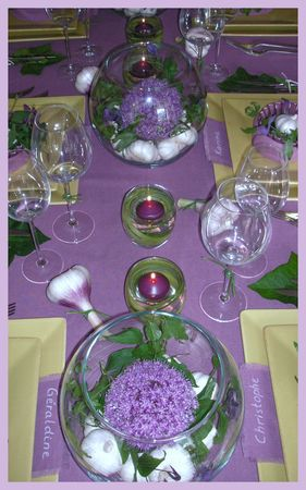 2009_06_27_table_ail9
